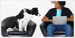 A dog watches his master use a laptop computer